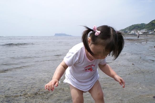 10-5-17-wakame-08.jpg