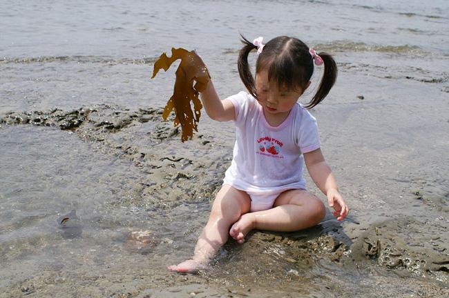 10-5-17-wakame-09.jpg