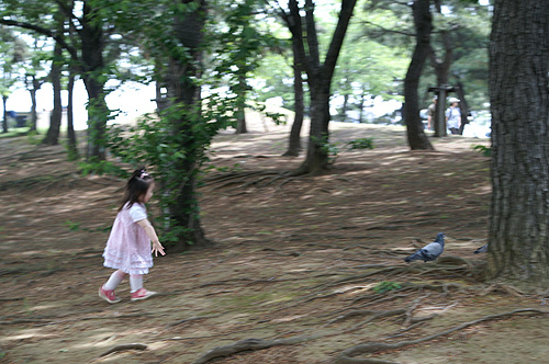 10-5-5-yokohama-010.jpg
