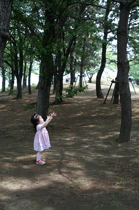 10-5-5-yokohama-09.jpg