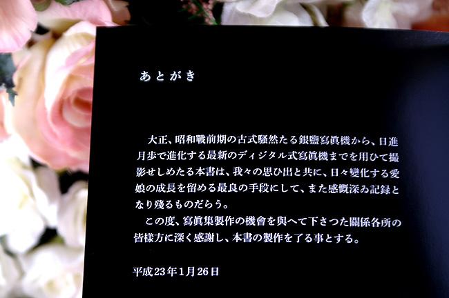 11-2-12-koi-010.jpg