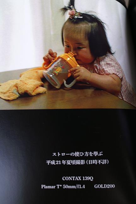 11-2-12-koi-06.jpg