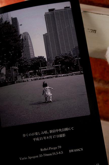 11-2-12-koi-08.jpg
