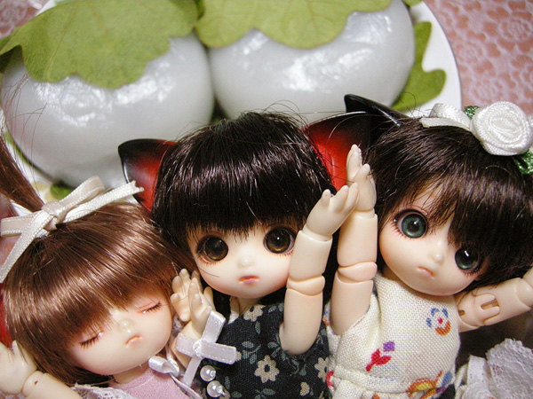 11-5-5-kame-04.jpg