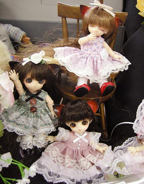 11-7-26-koimari-011.jpg