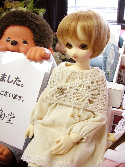 11-7-26-koimari-023.jpg