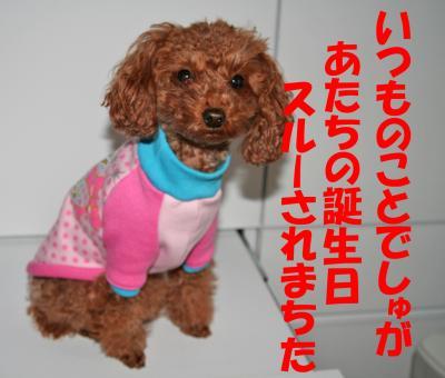 010306_convert_20090103124408.jpg