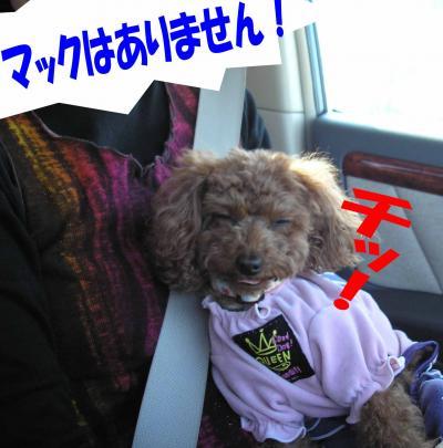 020802_convert_20090209000609.jpg