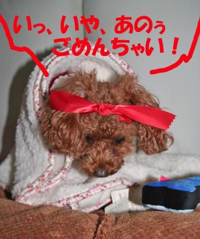 122909_convert_20081230022509.jpg