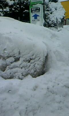 雪でバス停が・・・・