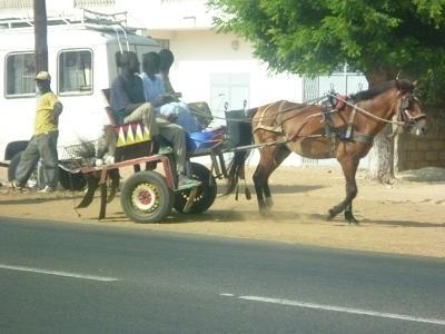 人を乗せる馬車