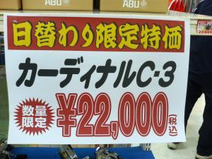P1000016_convert_20110101195024.jpg
