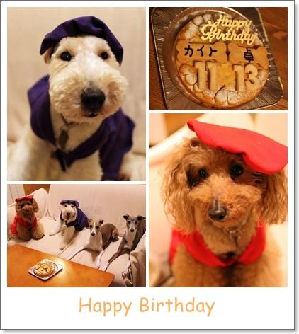 birthday_20110825121132.jpg