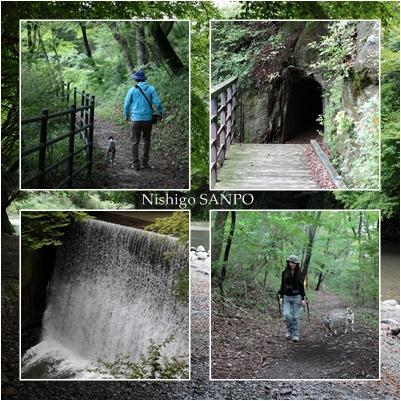 nishigo2.jpg