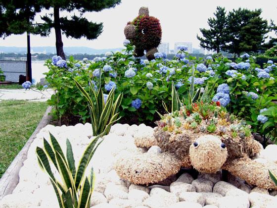 2010年 八景島紫陽花祭りの紫陽花1