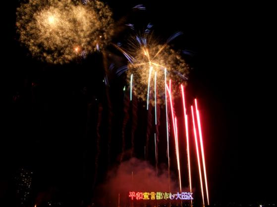 2010 大田区花火の祭典(2)