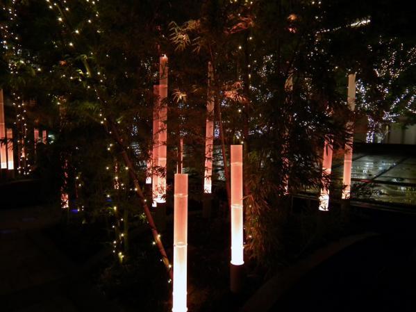 東京ミッドタウンタワー プリズムアベニューのイルミネーション(3)