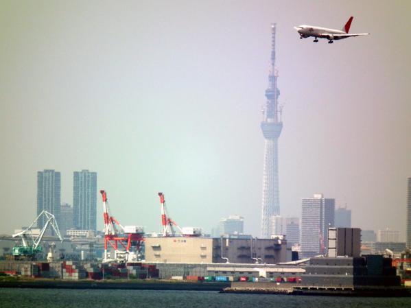 東京スカイツリーとJAL機