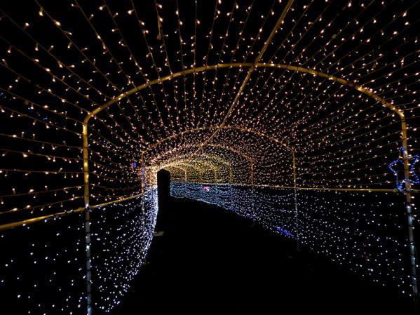 さがみ湖イルミリオン'10-'11 光のトンネル