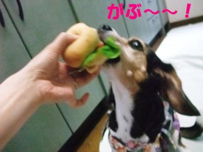 コピー (2) ~ DSCF1030