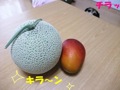コピー ~ DSCF1106