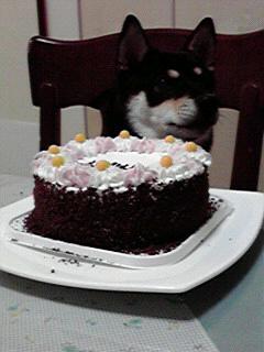 柚ちゃん2歳の誕生日