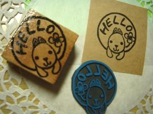 2009.2.13柴犬hello
