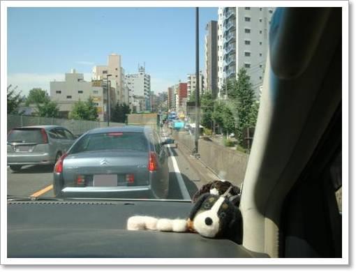 渋滞中・・・