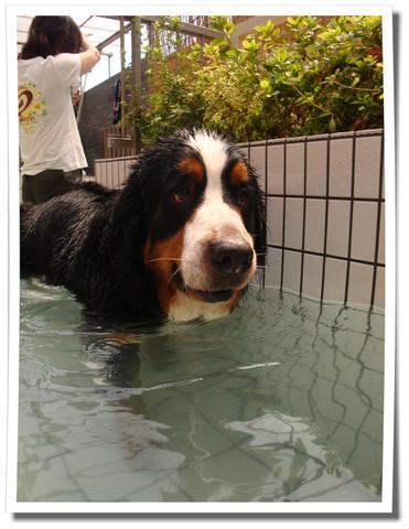ランドでプール♪