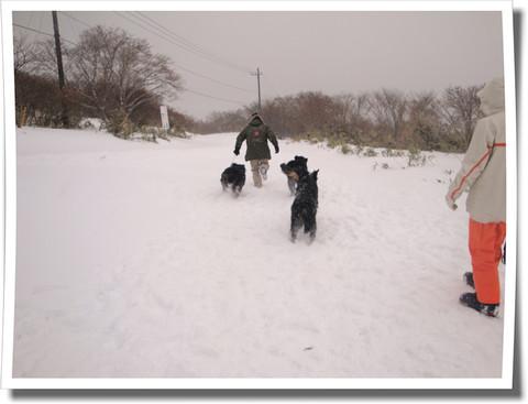 初☆雪遊び