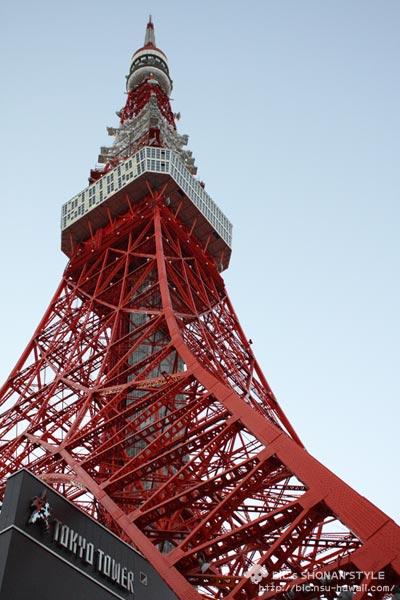 東京タワー,犬