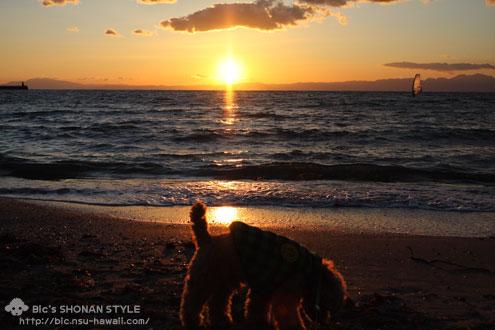 逗子,海岸,写真