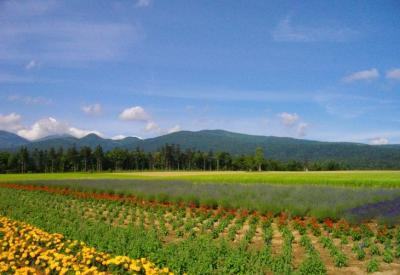 2009北海道46