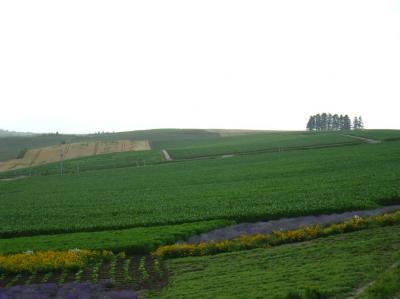 2009北海道57