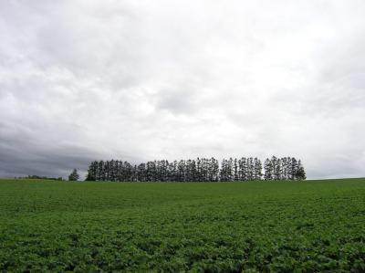 2009北海道61