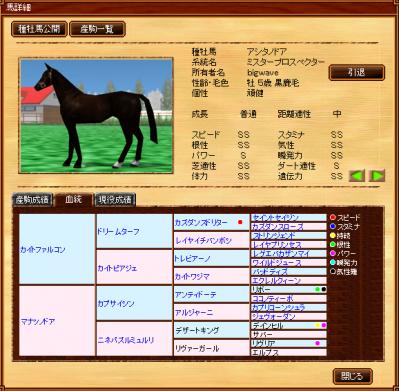 種牡馬アシタノドア