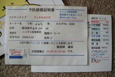 201101131109.jpg