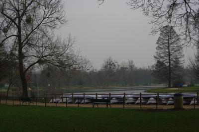 Bois de Vincenne 1