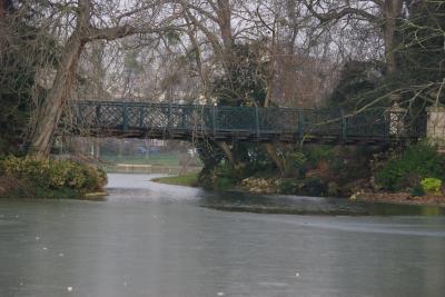 Bois de Vincenne 15
