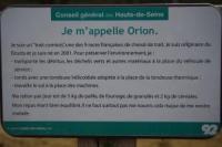 オリオン3