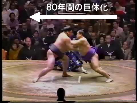 kyotaika02