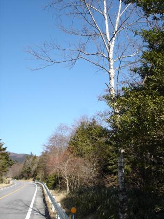 茶臼山高原道路Ⅰ