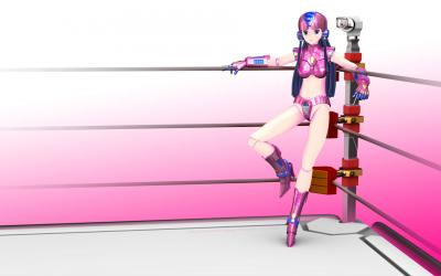桜姫コーナーポストE