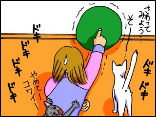 004_20100223115615.jpg
