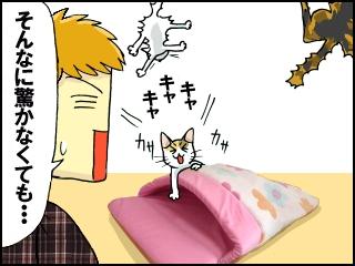 004_20111212191913.jpg