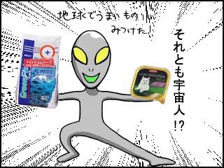 006_20100525165139.jpg