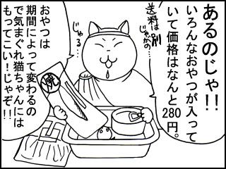 017_20100202185147.jpg