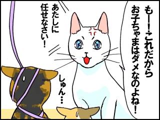 018_20111102200930.jpg