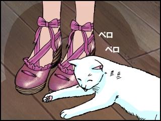 022 店員と猫
