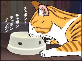 008ミルクをぺろぺろなめる猫